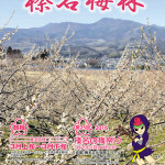 榛名梅祭り1