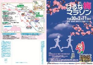 梅マラソン表3