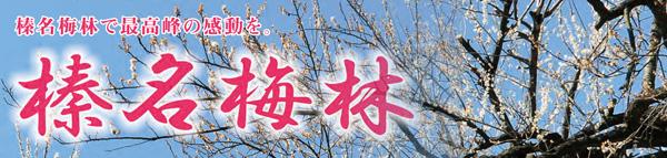 mt_haruna